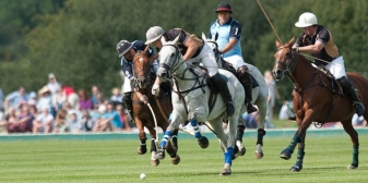 Polo this weekend: 5th & 6th July